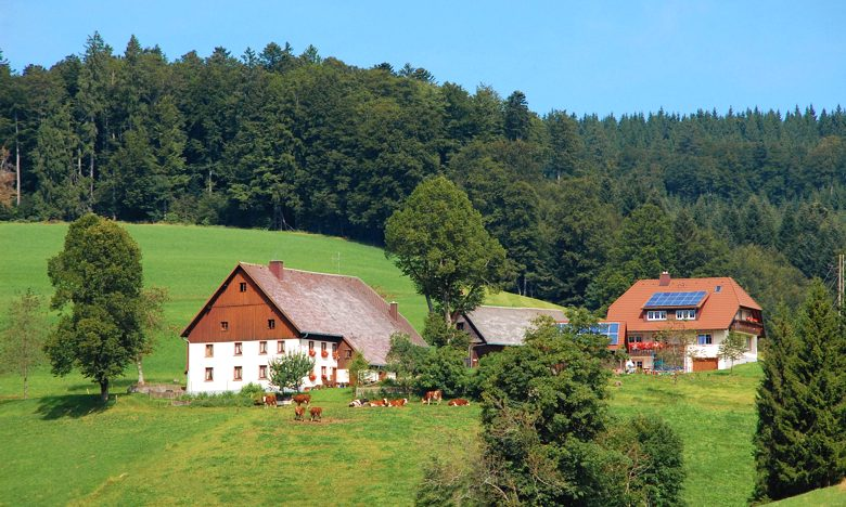 Urlaub auf dem Baschijörgenhof